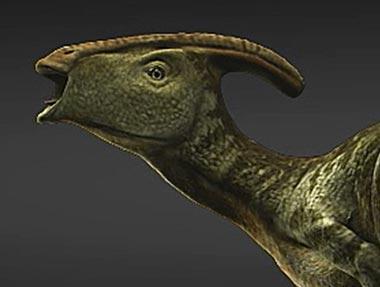 Little Parasaurolophus