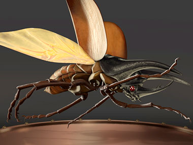 Insect Morphing Turntable